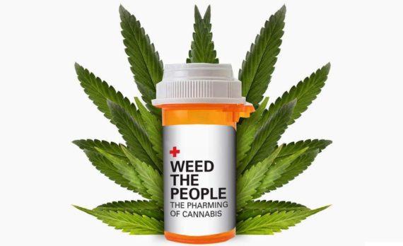 Marihuana-pri-lechenii-raka