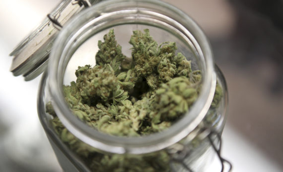 Medical marijuana is shown in a jar at The Joint Cooperative in Seattle, Washington January 27, 2012. Efforts to legalize marijuana for recreational use are gaining momentum in Washington state and Colorado, despite fierce opposition from the federal government and a decades-long cultural battle over America's most commonly used illicit drug.   Photo taken January 27, 2012   REUTERS/Cliff DesPeaux (UNITED STATES - Tags: HEALTH SOCIETY) - RTR2X4MP