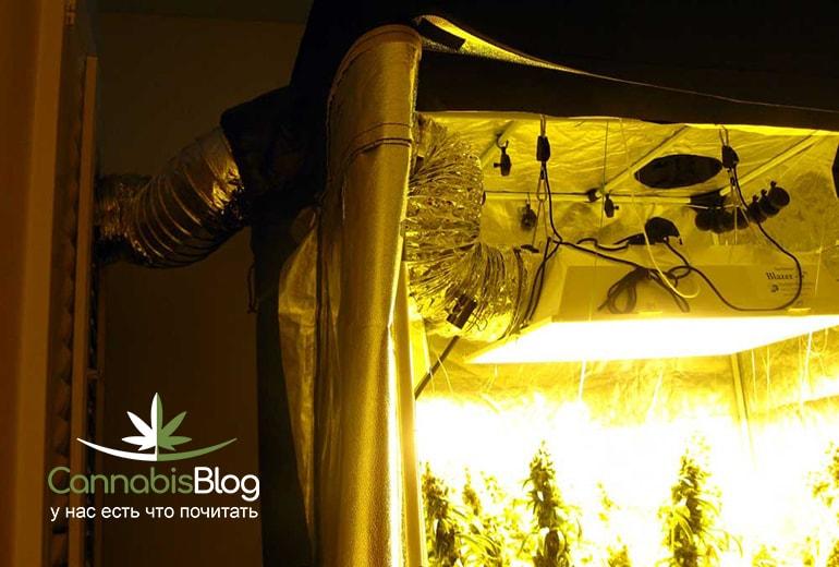 Правильно организованная вентиляционная система