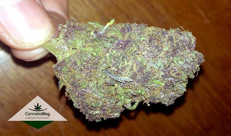 Мало заметный фиолетовый цвет