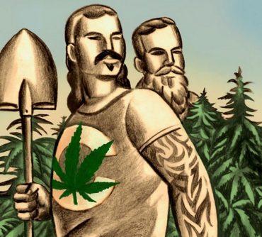 выращивание марихуаны культура гровинг