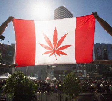 Канада хочет декриминализировать все наркотики