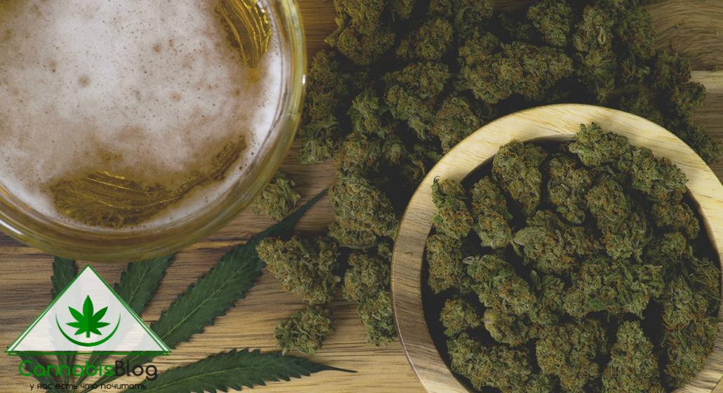 пиво с марихуаной