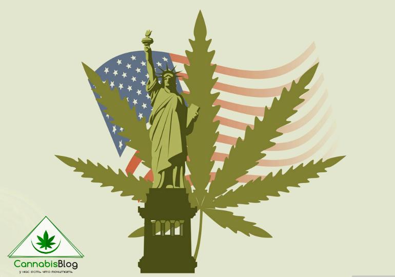 марихуана в штатах, США легализация, легальная конопля