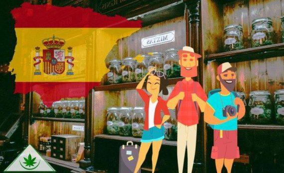 где курят травку в Испании?