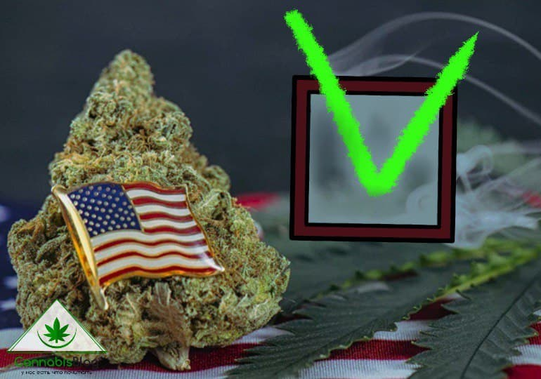 марихуана от боли ветеранам войны