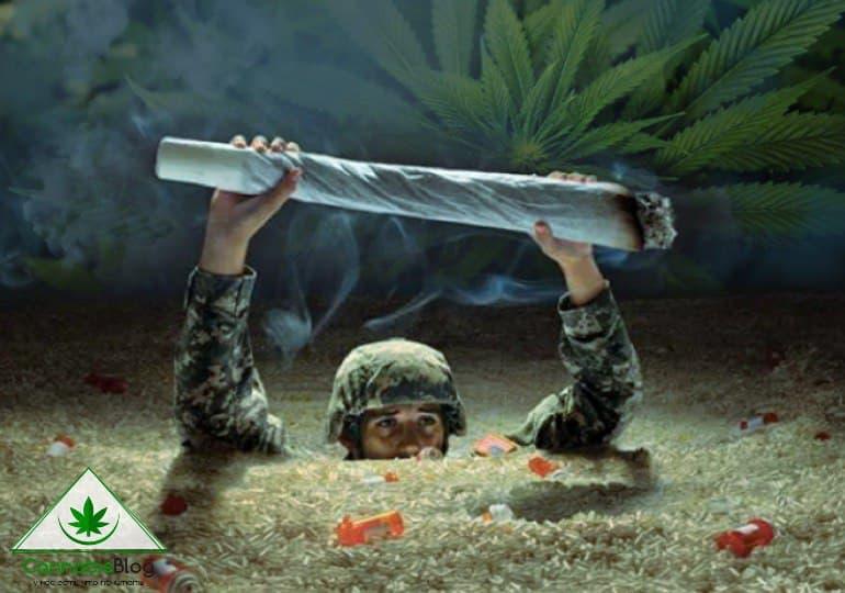 марихуана для ветеранов войны