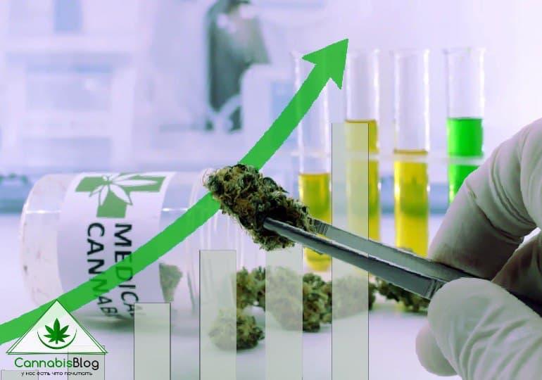 исследования марихуаны: рост финансирования