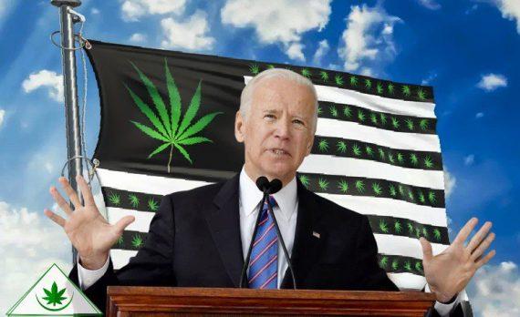 Легализация марихуаны и Джо Байден