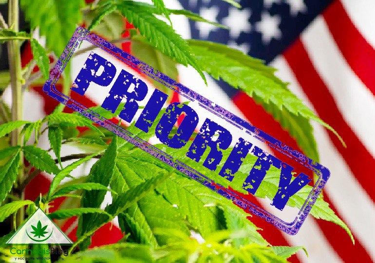 реформа марихуаны в приоритете