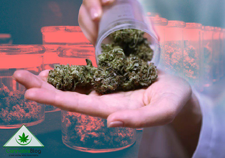 как хранить марихуану